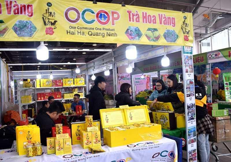 Trà hoa vàng - Sản phẩm OCOP đặc trưng ở Hải Hà